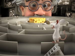 Rat in Maze photo